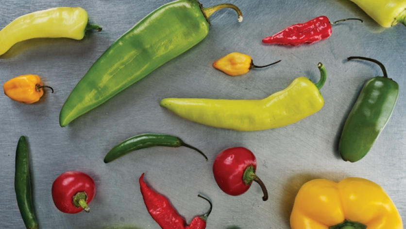 Summer Peppers